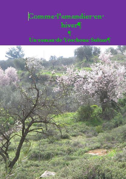 Comme l'amandier en hiver, un roman de Yéochoua Sultan