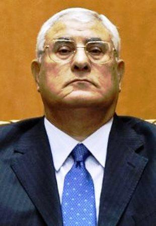 Adly Mansour, Président de l'Egypte par Intérim'