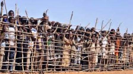 Camp de réfugiés dans le Sud du Tchad. ( Photo: AFP/Philippe Hughen) Insuffisance des moyens financiers pour venir en aide à ces populations. (Selon Amnestie internationale)